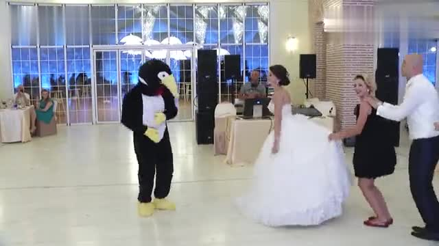 PENGUINE DANCE ALBANIA Happy Penguin Dance