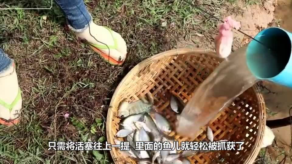 Women use a plastic pipe to make fishing magic. Fishing is as simple as pumping water.