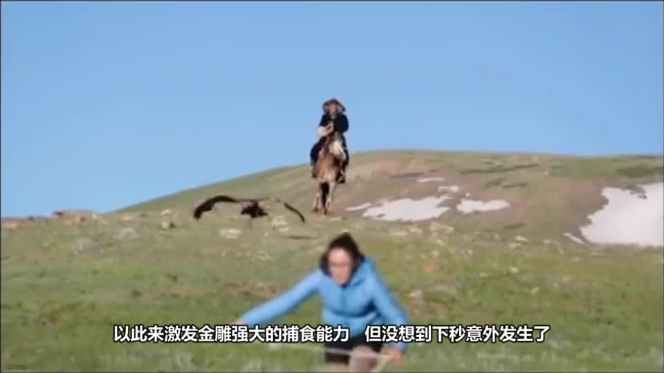 The woman trained the golden sculpture with a rabbit, and was treated as a prey. The camera recorded the whole process.
